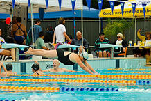 Photo of a person diving into the pool